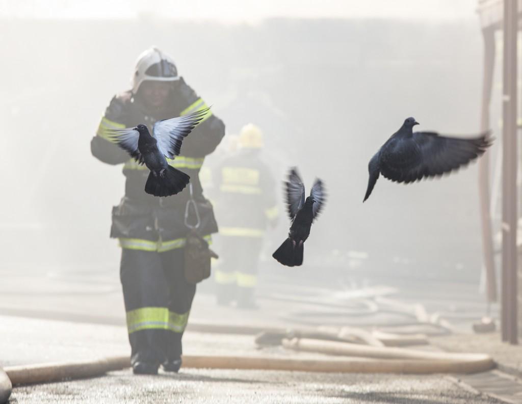 «Пожар», 2013 год история одного фото Иван Беседин фотография