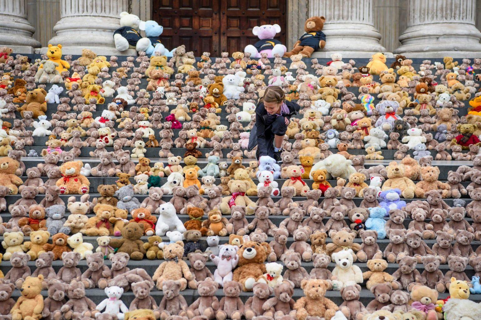 700 плюшевых медведей