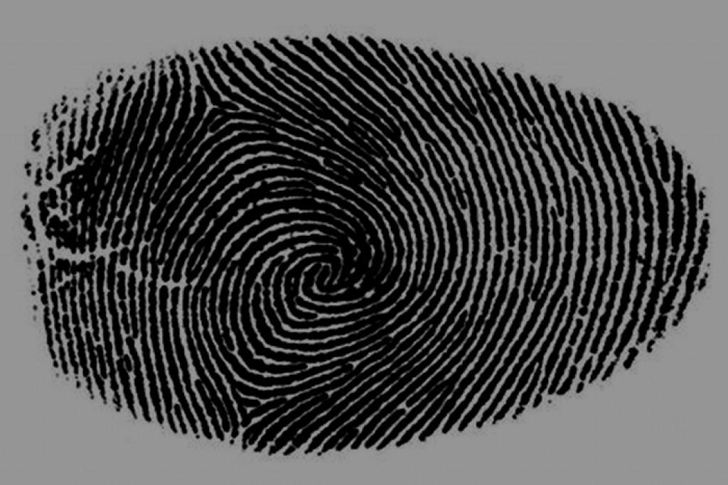 Письма из Бишкека. Биометрические данные