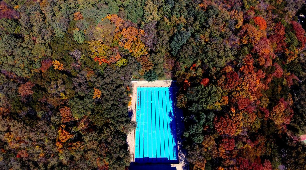 Ныряя в осень