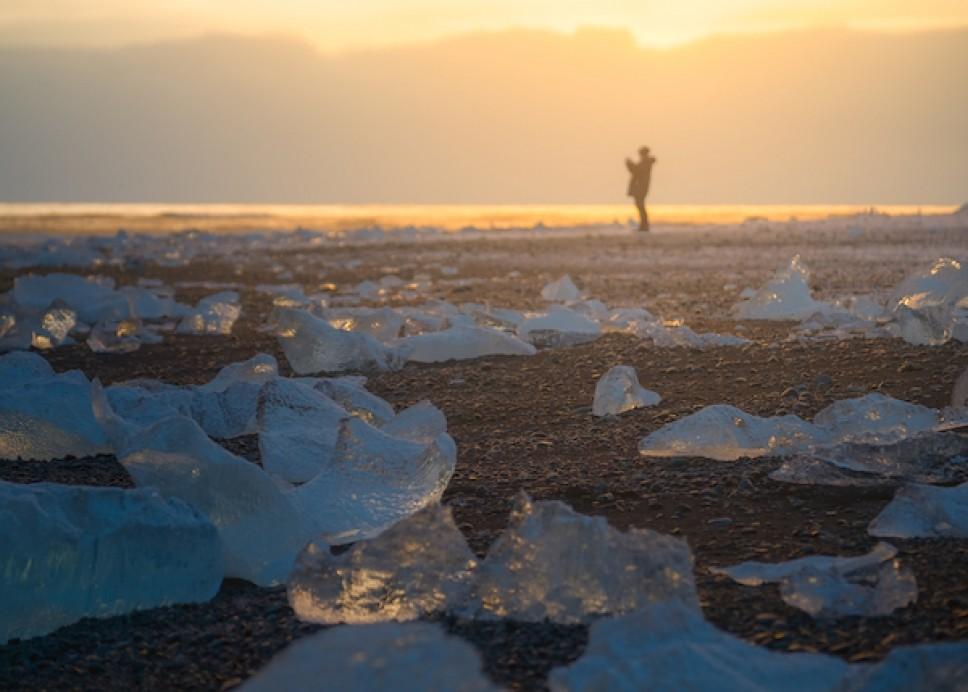 Каково это - быть фотографом дикой природы