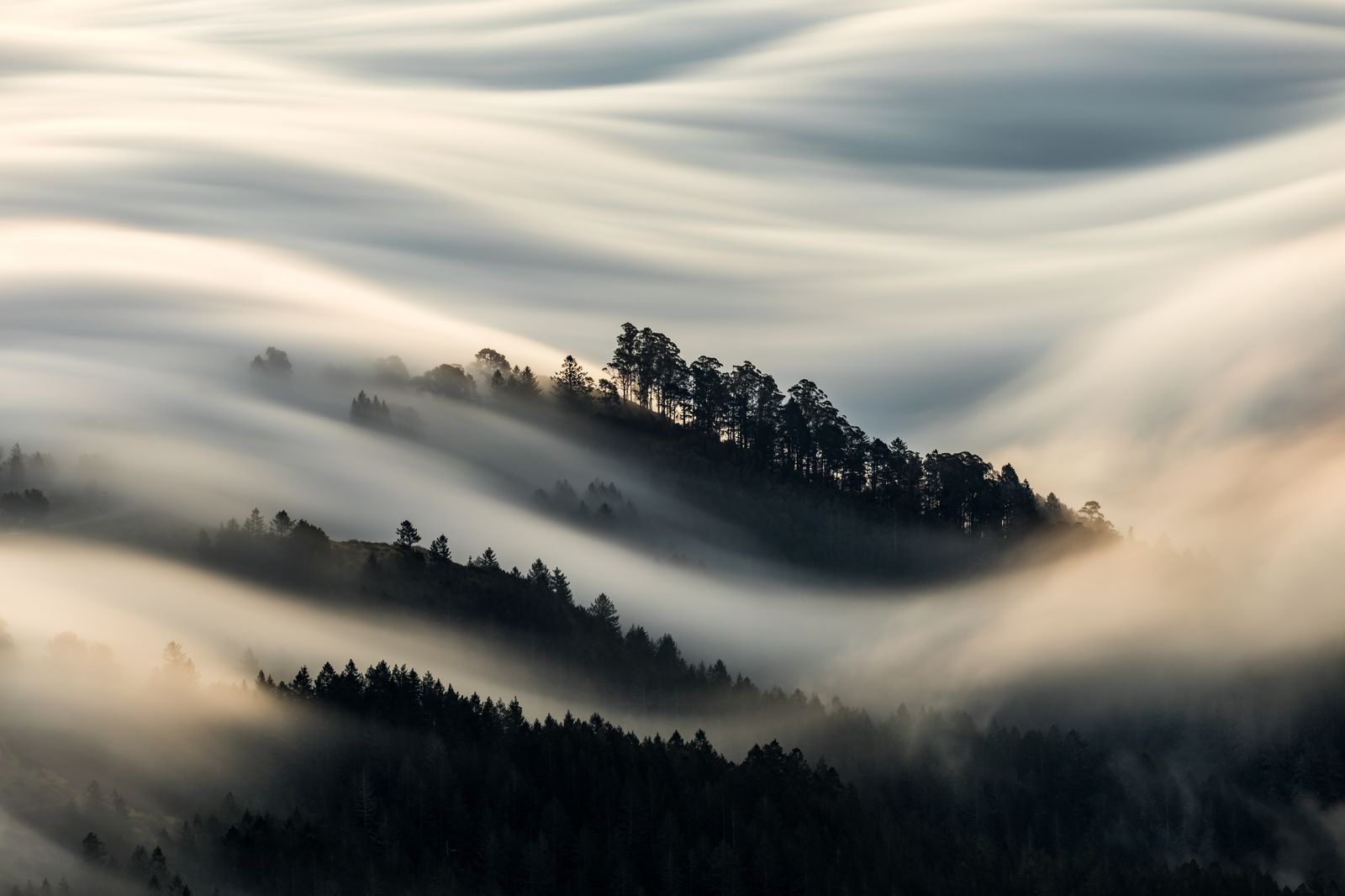 Стелется туман