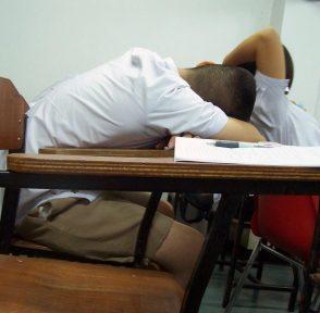 школа жара тесты результаты исследование Гарвард США