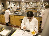 Калифорнийский университет пересадка памяти наука Альцгеймер