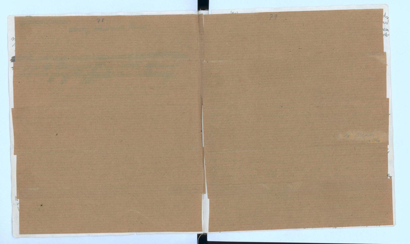 Специалисты расшифровали заклеенные страницы дневника Анны Франк