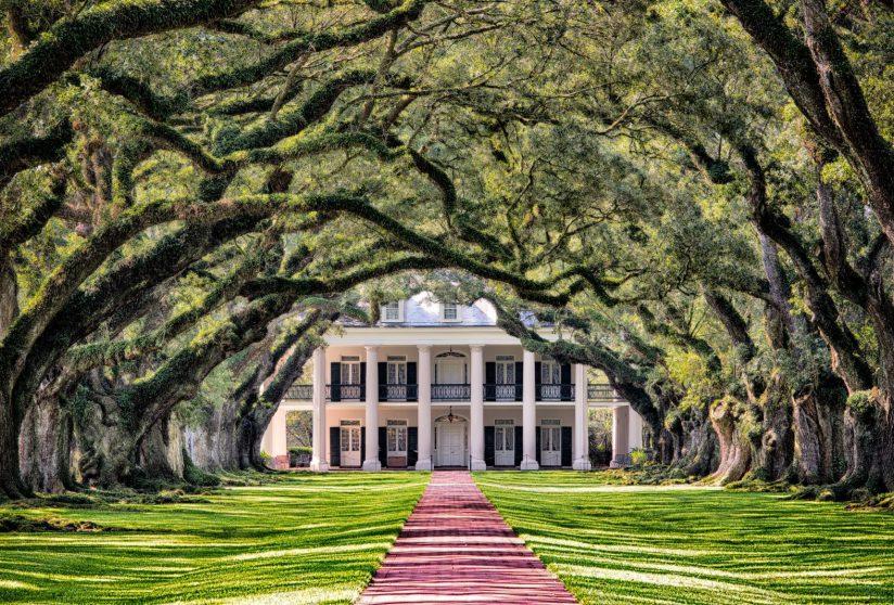Луизиана Новый Орлеан Дубовая аллея