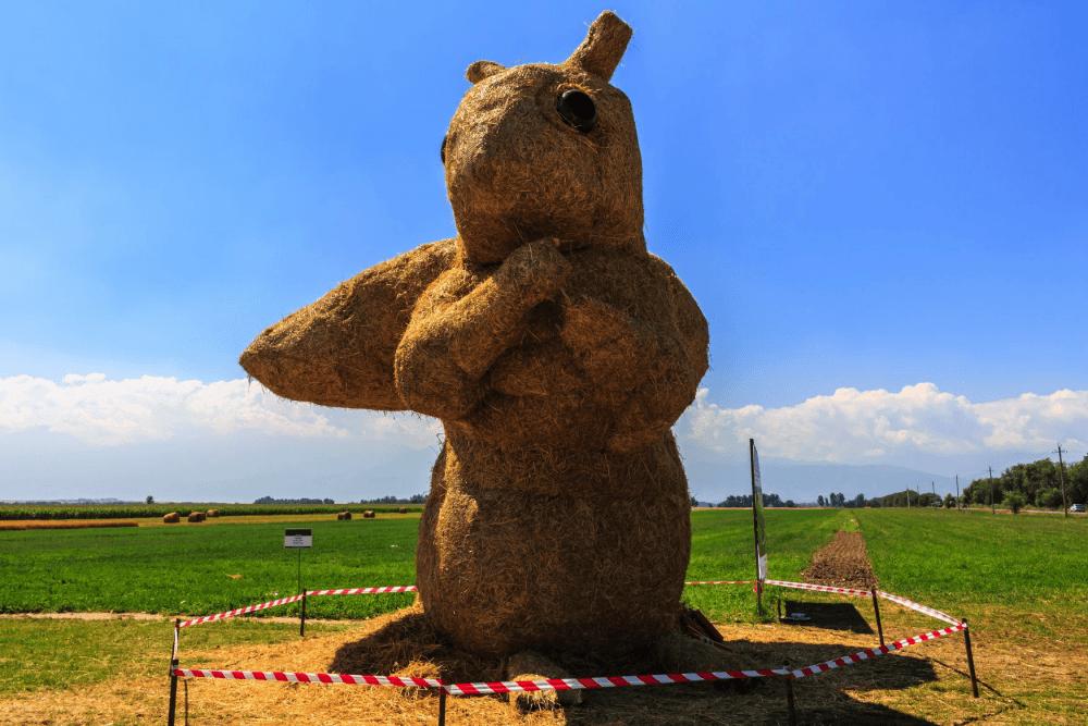 Соломенную белку уничтожили в Алматинской области