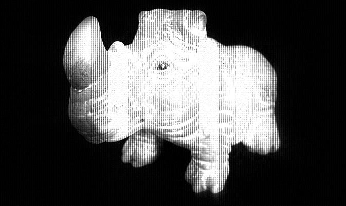 носорог значимые вещи рассказы чтение литература