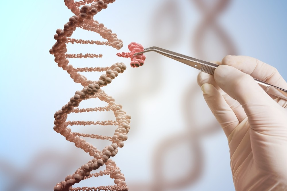 Ученые требуют ввести мораторий на «генное редактирование» детей