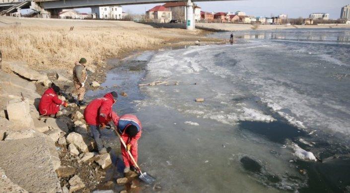 Жители Атырау добровольно очищают Урал от мертвой рыбы