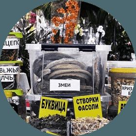 сушеная змея Алматы Зеленый базар покупка юмор продукты продажи развлечение город