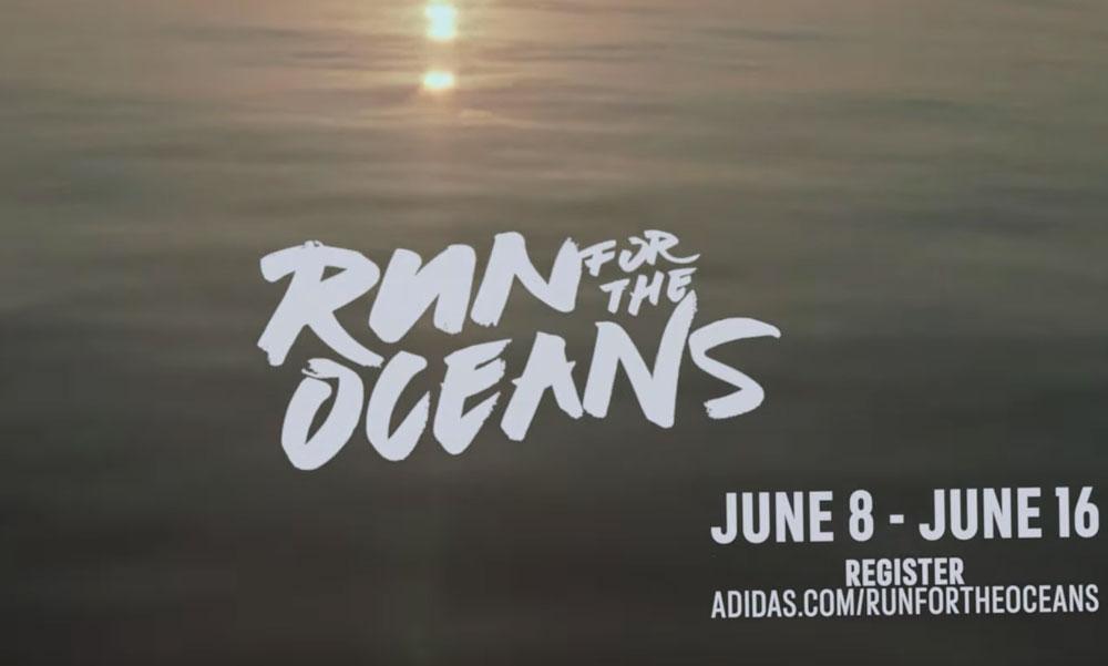 Run For The Ocean экозабег всемирный благотворительность природа экология