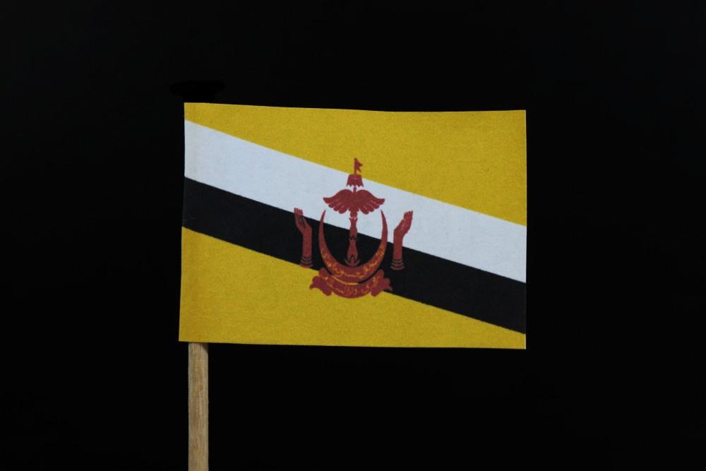 Бруней продлил мораторий на смертную казнь за гомосексуализм