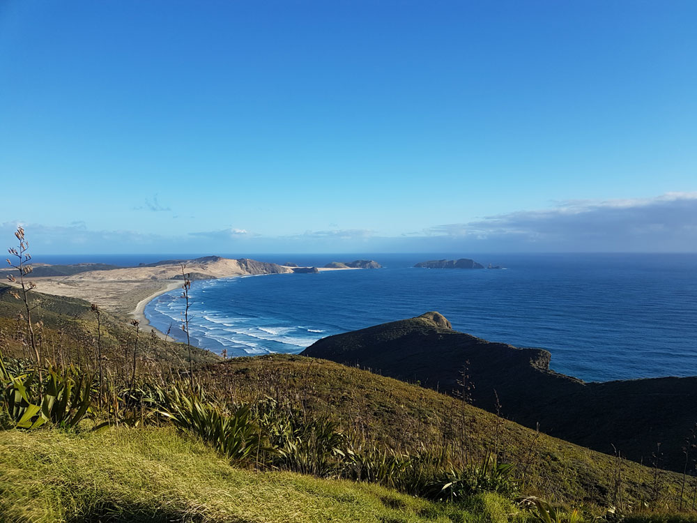Каково это – уехать в Новую Зеландию и не пожалеть