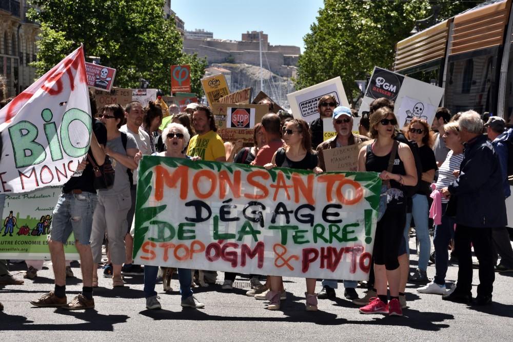 Марсель Франция мотивирующая демократия страны власть политика народ протест