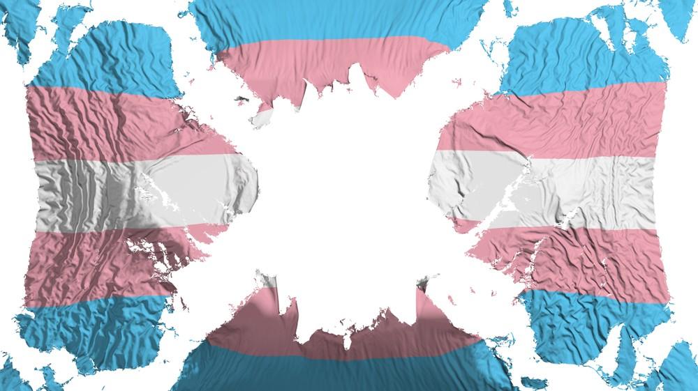 современную концепцию гендера Ватикан трансгендеры флаг гендерная идентичность ЛГБТ