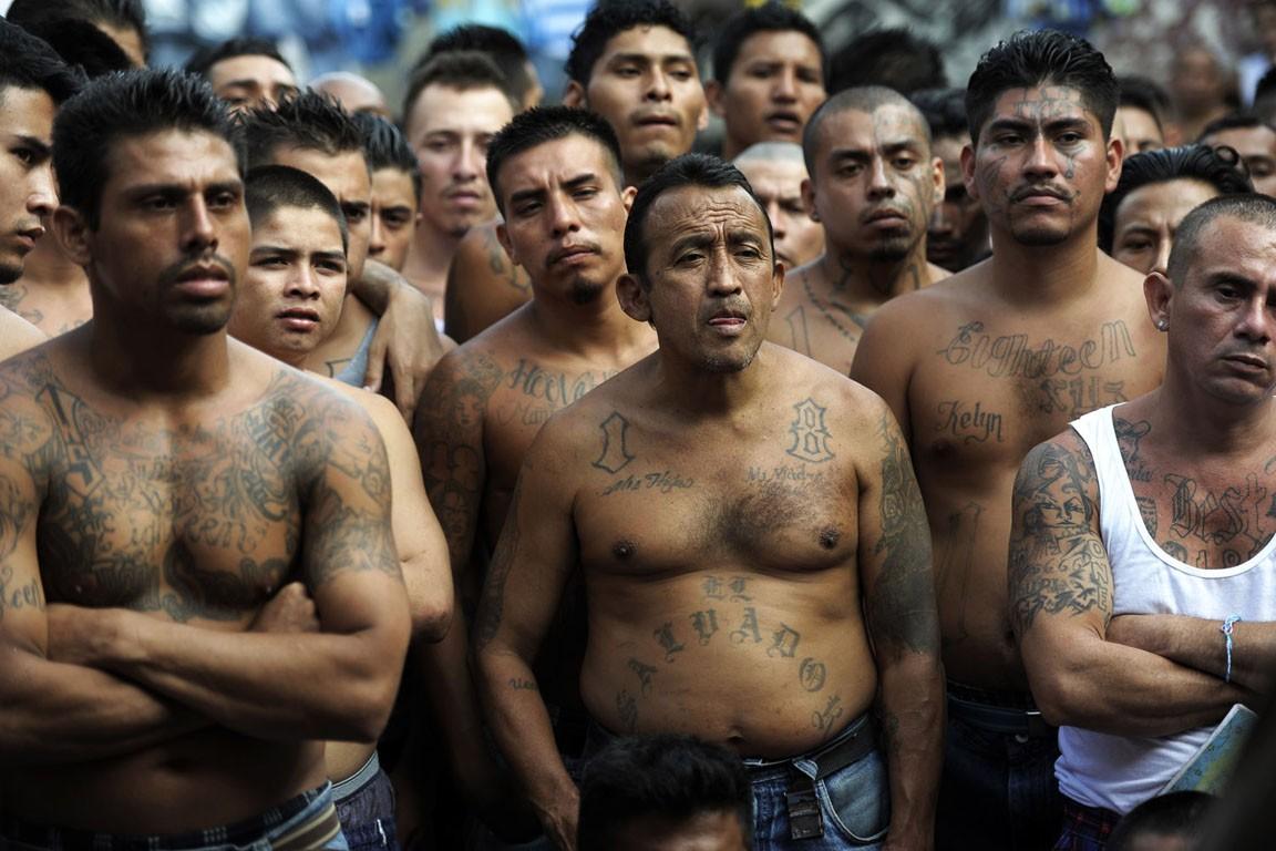 Мексиканский картель устроил кровавое шоу, воюя за авокадовые плантации
