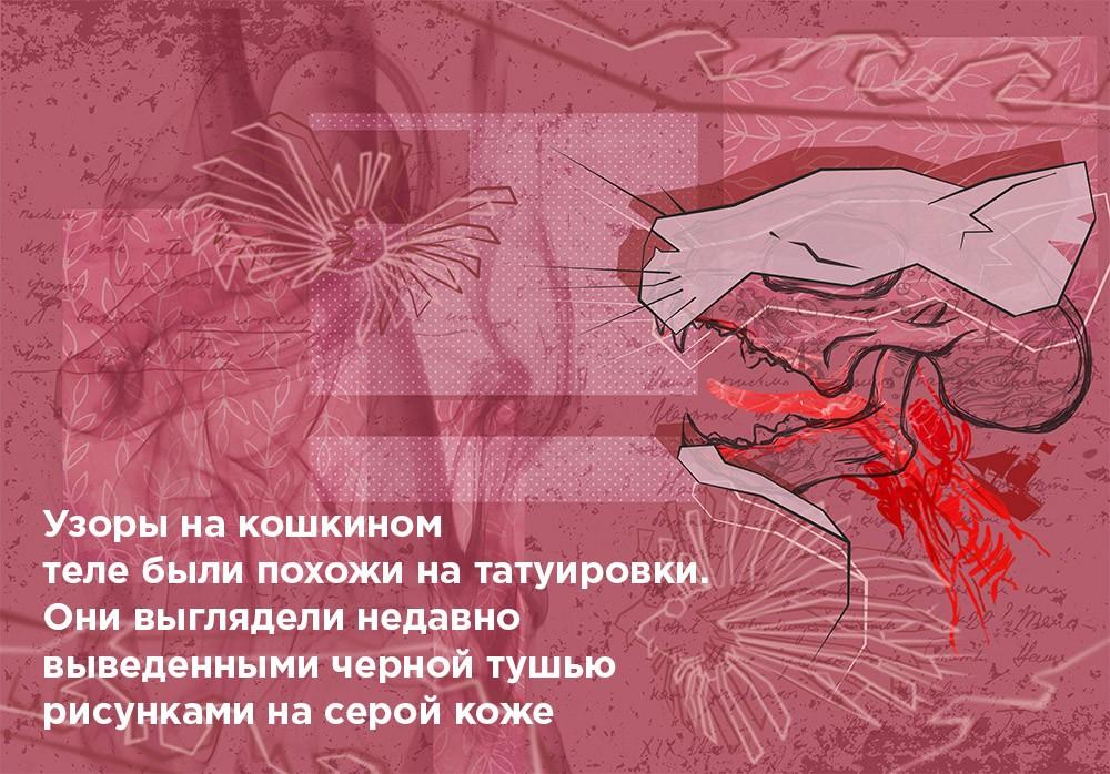 """Рассказ Елены Некрасовой """"Пиратская песня"""""""