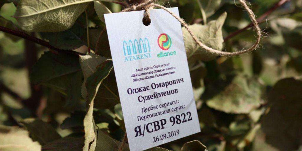 В Алматы открылась яблоневая аллея Олжаса Сулейменова