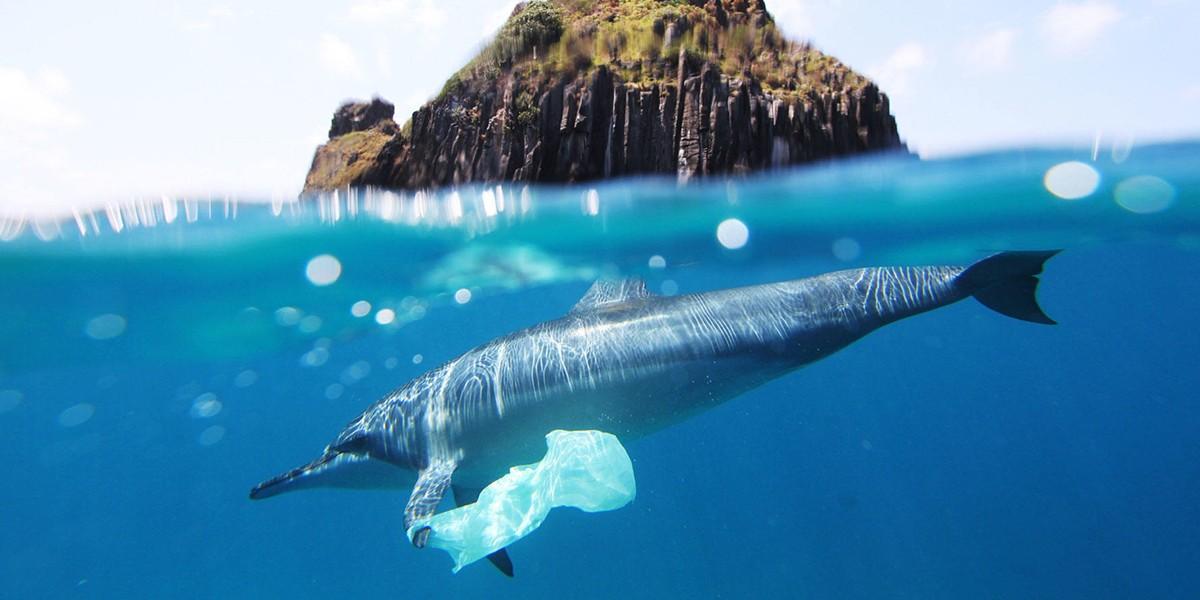 Coca-Cola нашла применение океаническому пластику