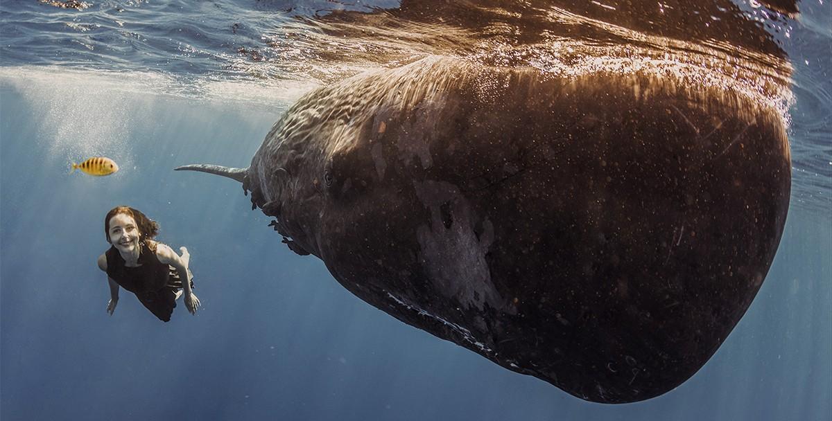 Натали Карпушенко –девушка, приручившая китов