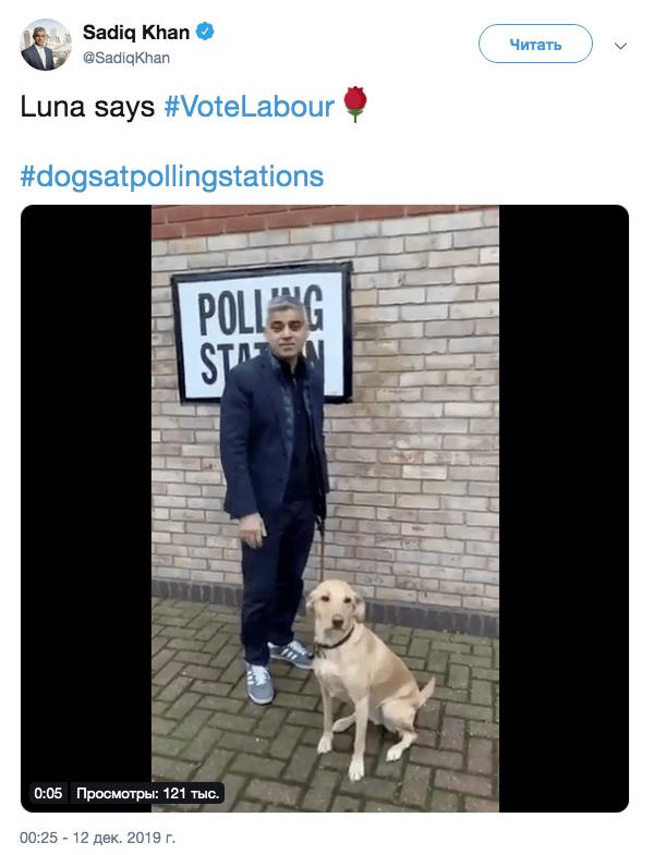 Британский премьер-министр и мэр Лондона пришли на выборы со своими собаками