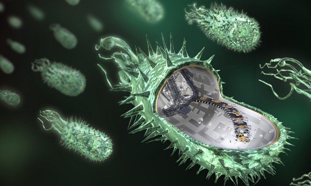 Микроб может стать «вечным» носителем данных