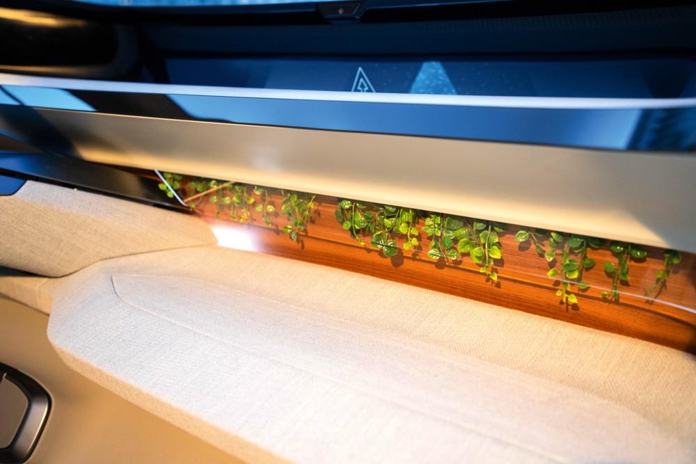 Audi AI: ME растения в салоне