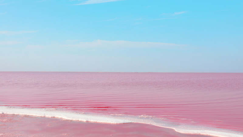Токаев назвал  урон, нанесенный розовому озеру  Кобейтуз  необратимым