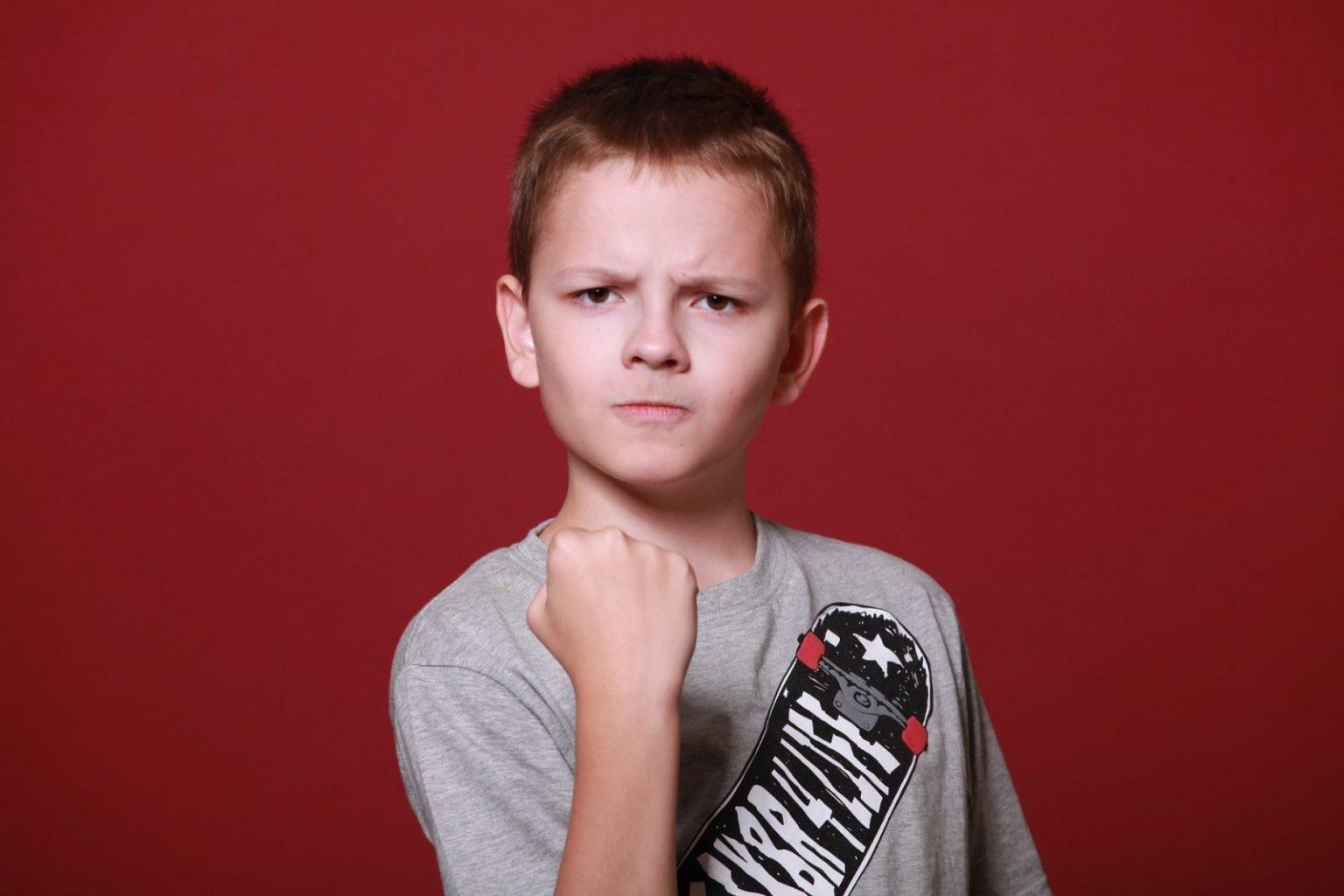 Дистанционное обучение провоцирует бытовое насилие