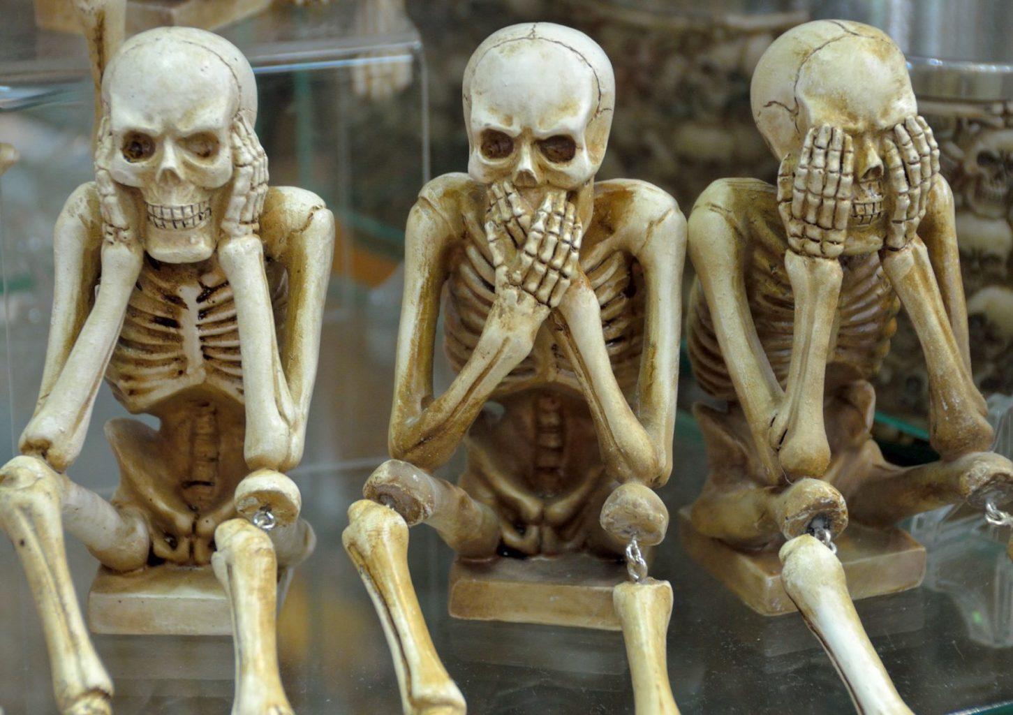 Британец  коллекционировал человеческие кости без разрешения их владельцев