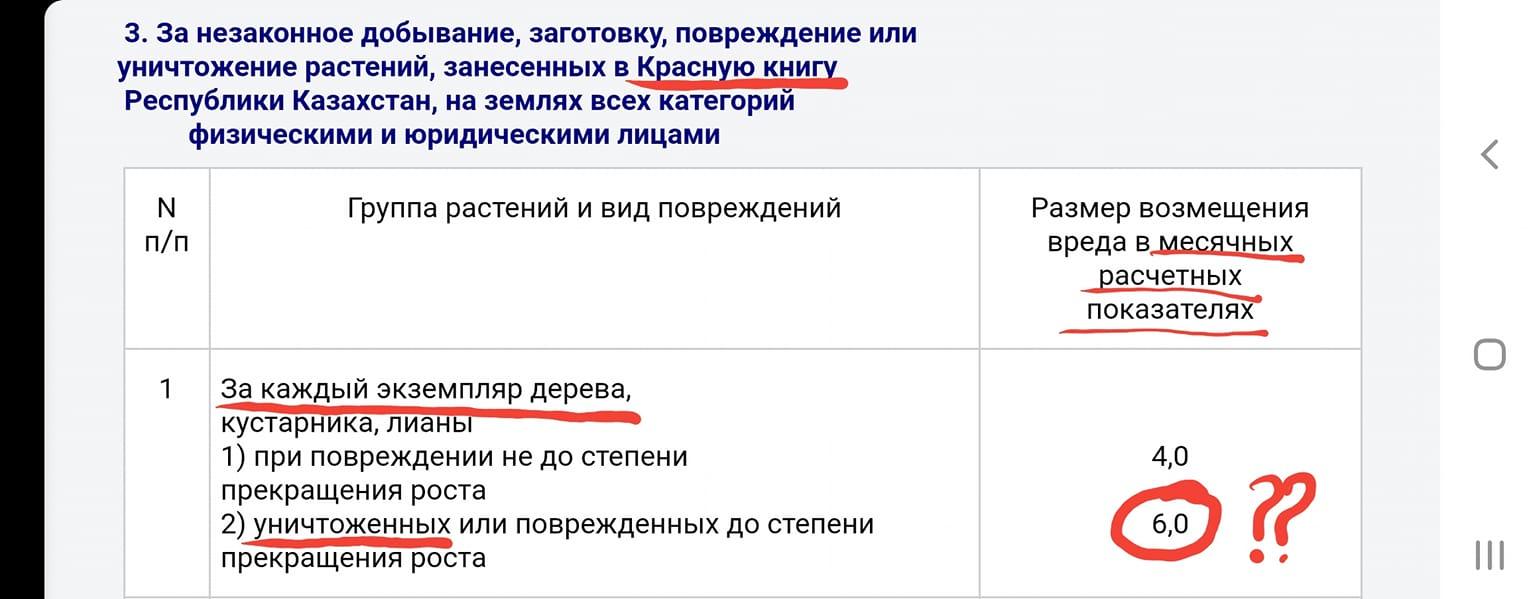 Джохар Утебеков рассказал, почему в Казахстане можно безнаказанно рубить деревья