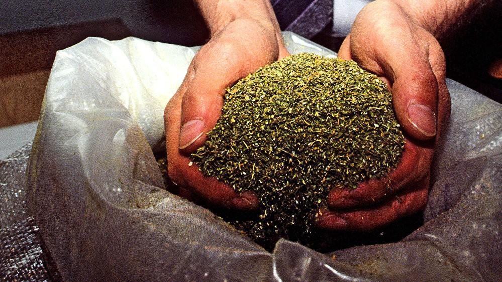 Павлодарка хранила дома более тонны веществ для приготовления опия (видео)