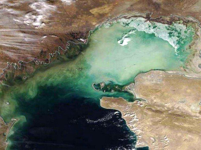 Ученые предсказали Каспию настоящий экоцид