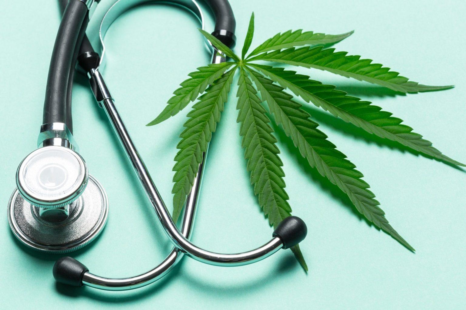 Бизнес Казахстана готов инвестировать в марихуану