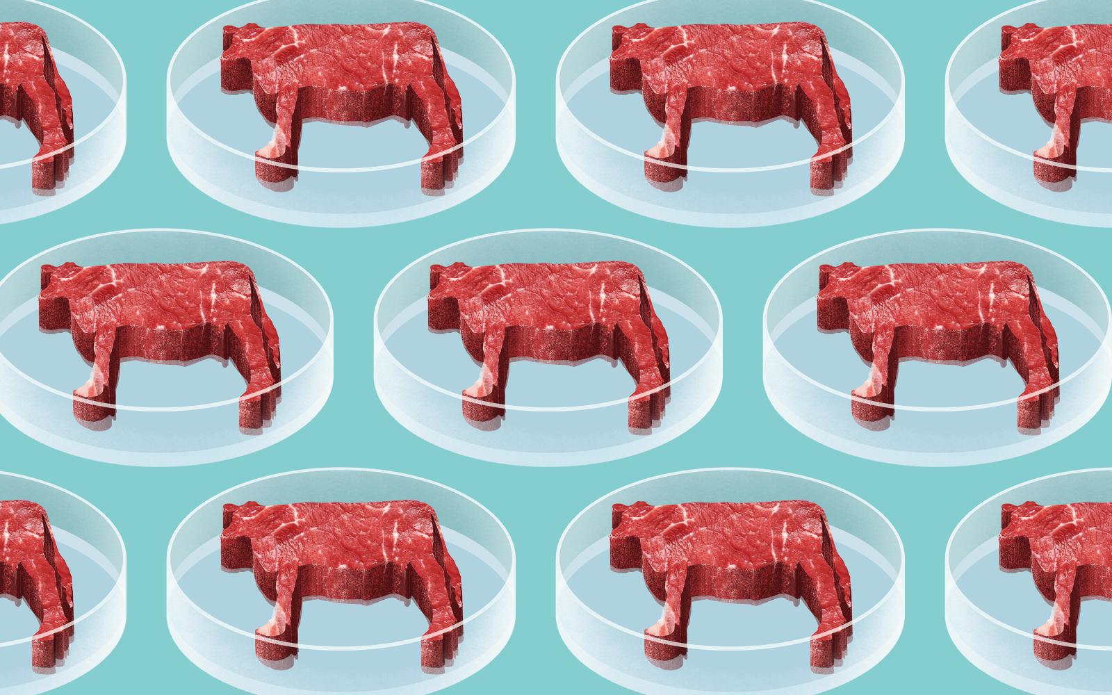 Напечатанная еда, мясо из пробирки: что мы будем есть через 20 лет?