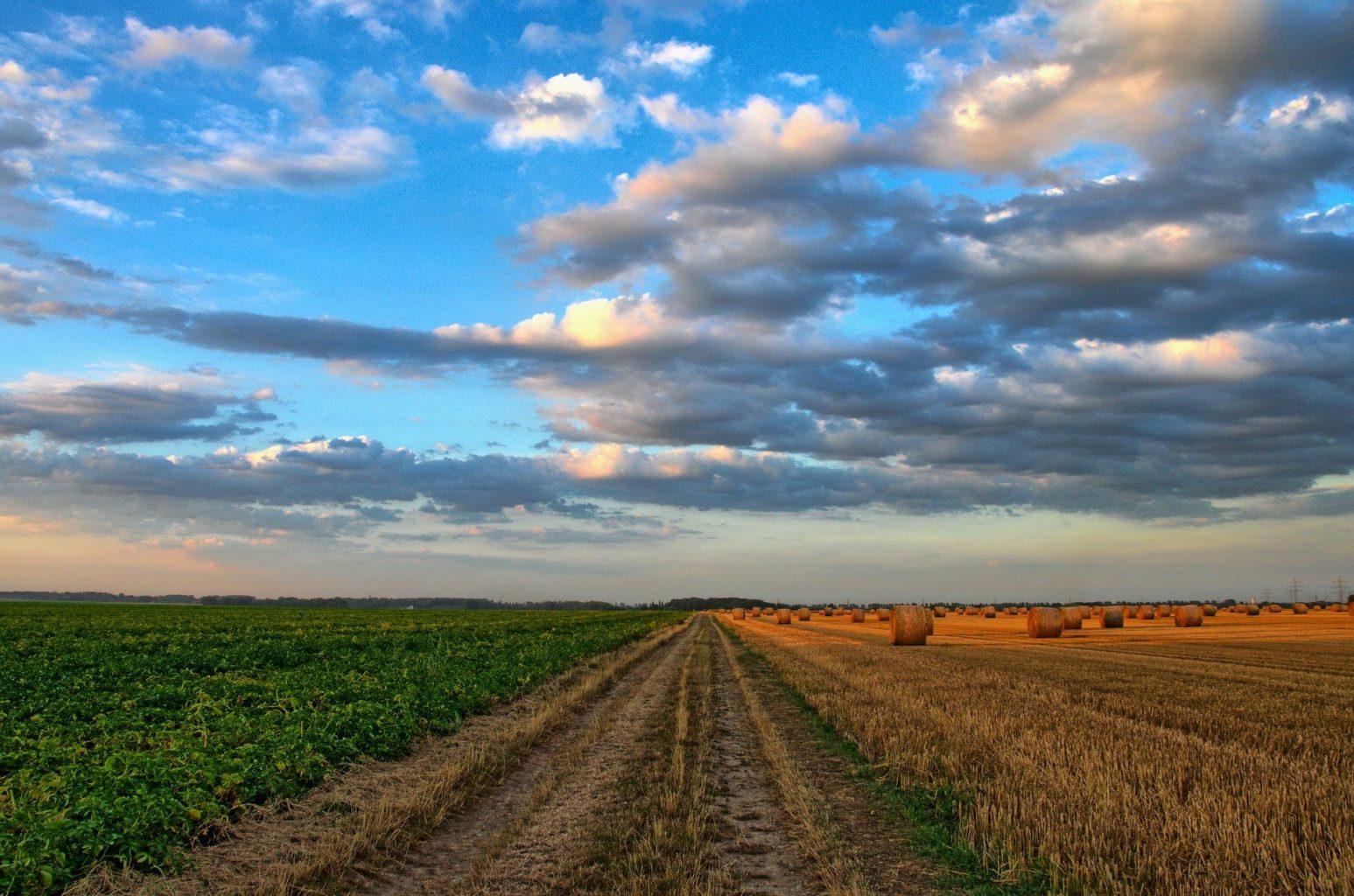 Токаев запретил иностранцам покупать или арендовать казахстанские земли