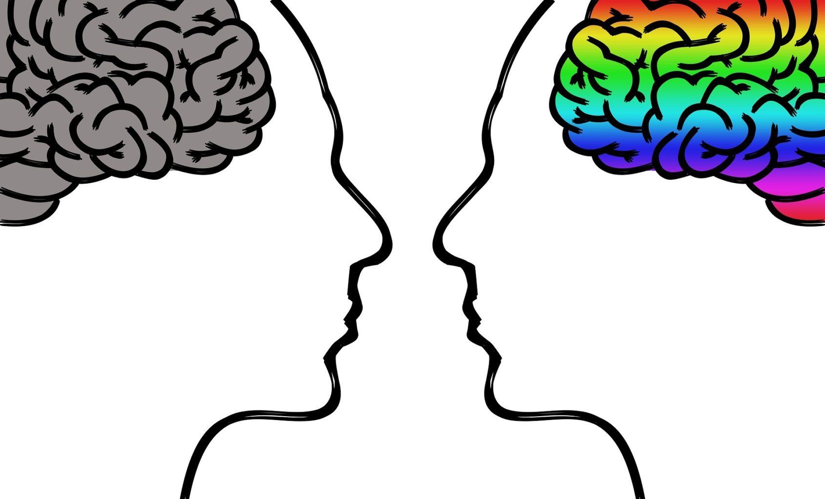 Не любите мне мозг или Особенности отношений с сапиосексуалами