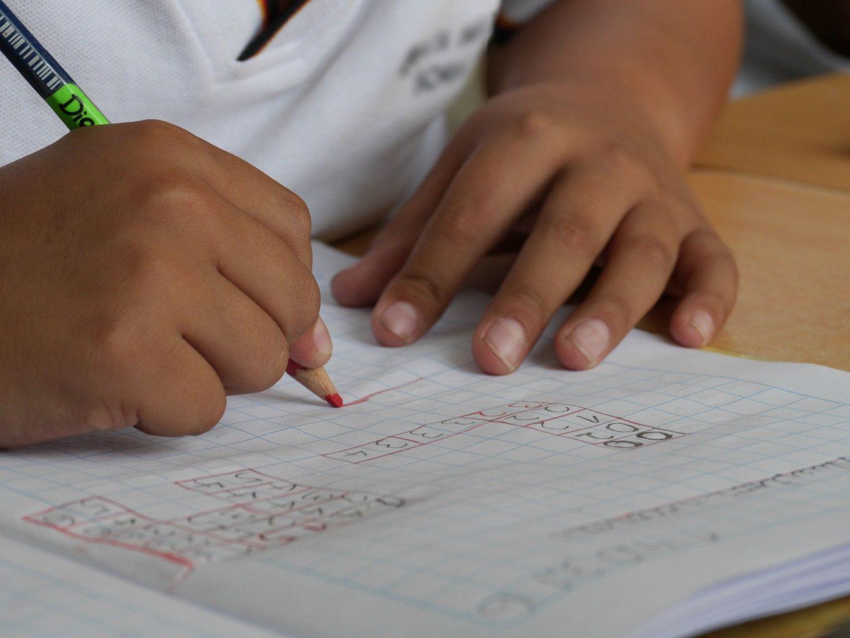 Дистанционка привела к катастрофическому падению успеваемости школьников