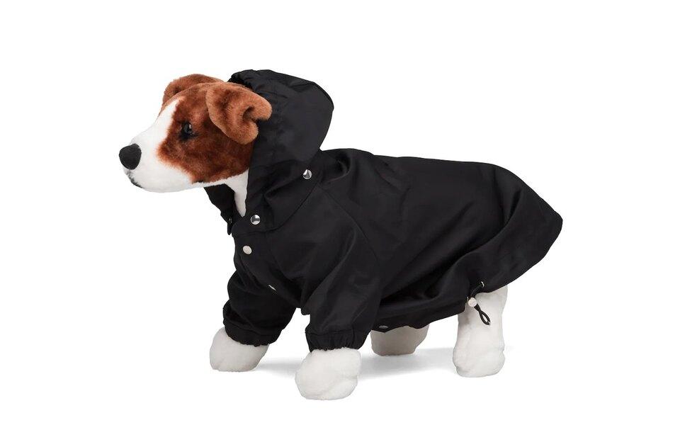 Сколько стоит дождевик для собак от Prada