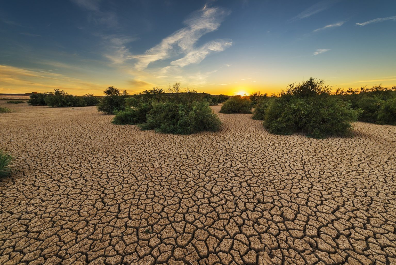 Казахстан через 40 лет станет пустыней