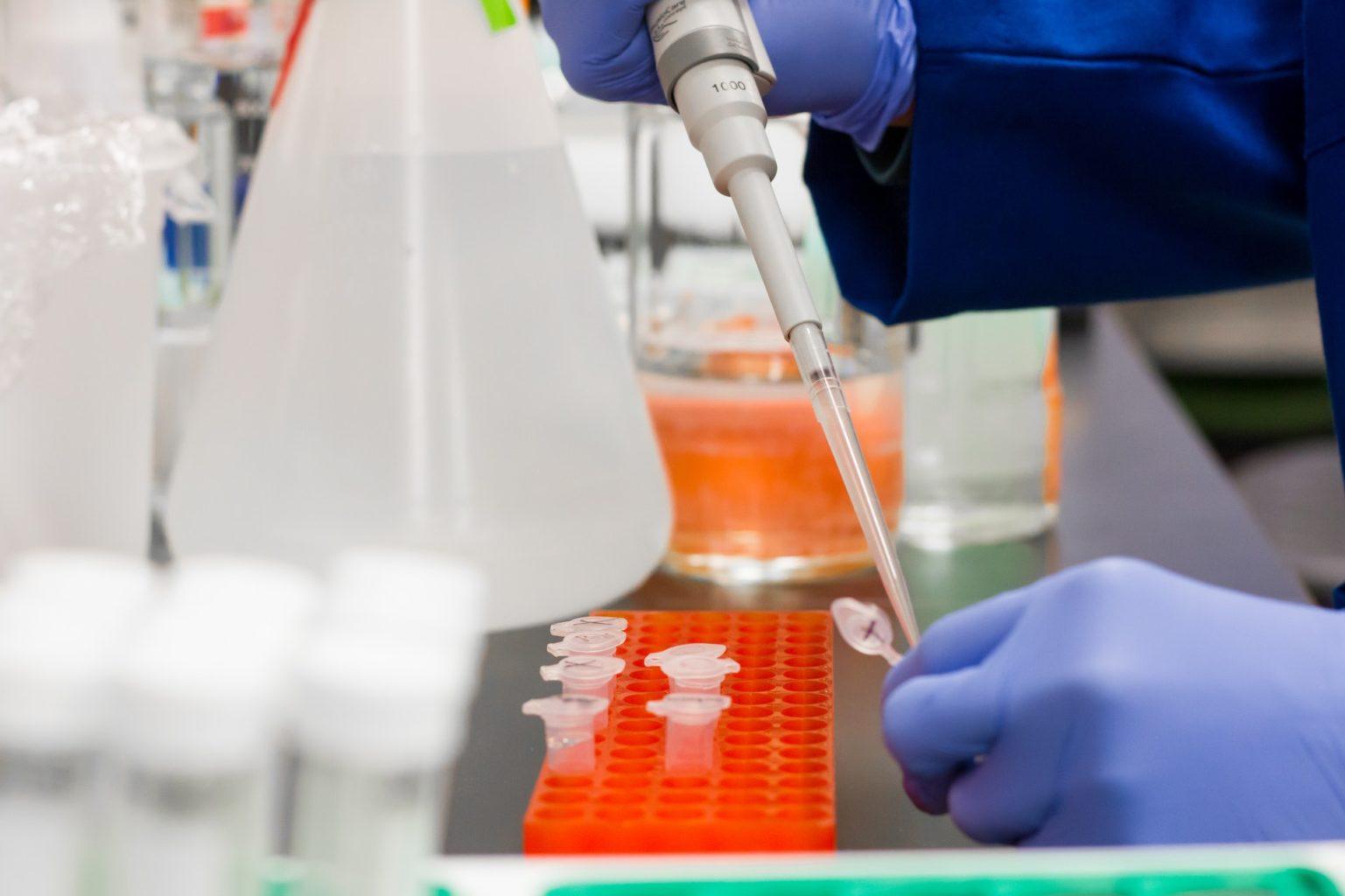 Учёные выяснили, что иммунитет к коронавирусу может быть пожизненным