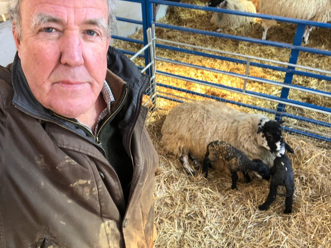От автомобилей к овцам: Джереми Кларксон стал фермером и снял об этом программу