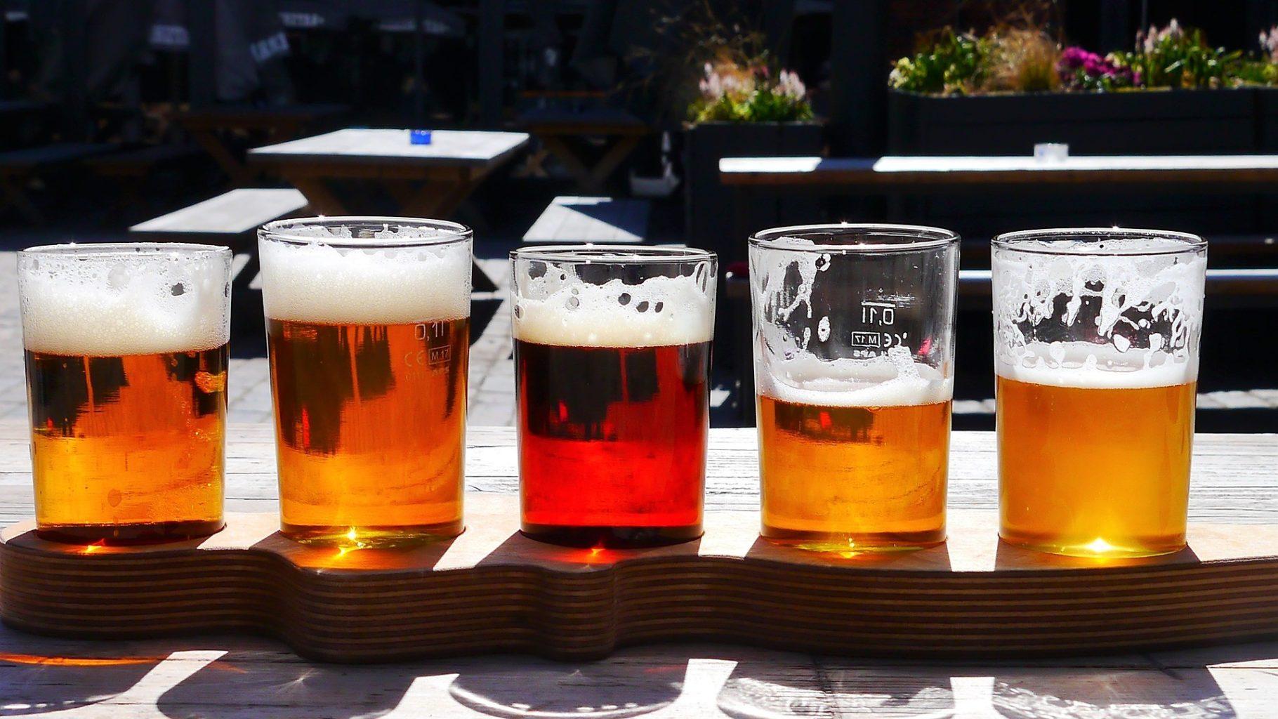 Ученые назвали четыре полезных свойства пива
