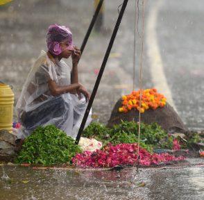 Мальчик, который торгует цветами